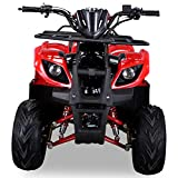 Kinder Quad S-8 Farmer 125 cc Motor Miniquad 125 ccm Toronto (Rot) - 6