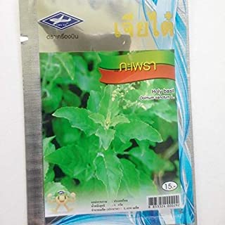 Suffolk Herbs 500 Seeds Basil Bush
