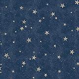 Fine Décor M1490 Starlight Stars Navy Papier peint, Bleu