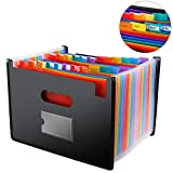 File Folder Organizer/24 Pockets Hot Pressing Forming Document Organizer with Cloth Edge Wrap and File Guides,...