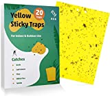 KGK Fruit Fly Traps -20 Pack, Dual-Sided Yellow Sticky Traps for Flying Plant Insect Like Fungus Gnats,Aphids, Whiteflies, Leafminers Other Flying Plant Insects - 6x8 Inches (Twist Ties Included)