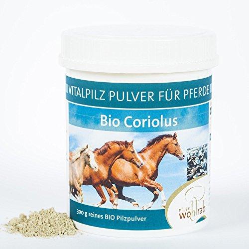 Coriolus Bio Vitalpilz Pulver für Pferde 300g