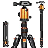 Joilcan 80-inch Tripod for Camera, Aluminum Tripod for DSLR,Monopod, Lightweight Tripod with 360 Degree Ball Head Stable for Travel and Work 18.5'-80',19lb Load (Orange)