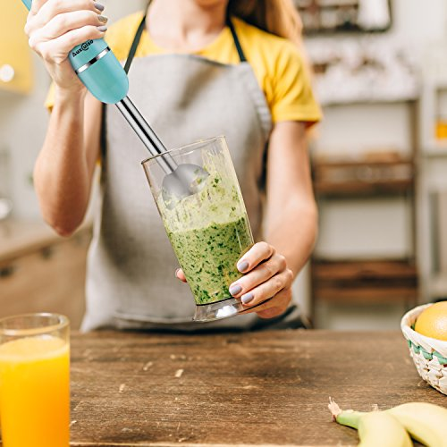 Auxcuiso Stick Immersion Hand Blender Powerful 500 Watts 8 Speeds 2 in 1 Whisk Attachment Included Emersion Blender Mixer