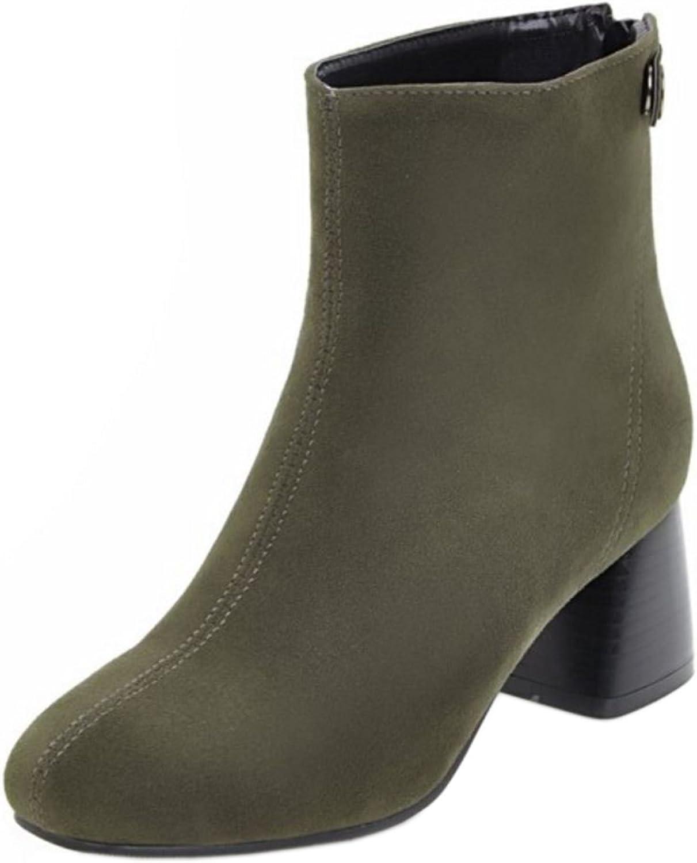 AicciAizzi Women Dress Boots Zipper