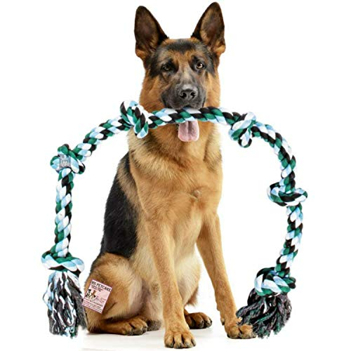 MS Petcare 6 Knots Cotton Rope Dog Chew Toy for Medium to Adult Dogs 30 Inch Long - Extra Durable (Blue Color - XXL)