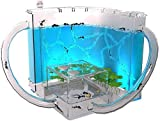 NHY Hábitat de la Granja de Hormigas para niños, ecosistema en Laberinto 3D de Gel...