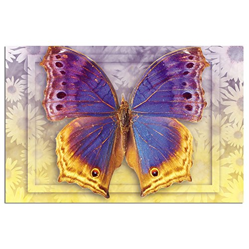 """Tree-Free Greetings EcoNotes Stationary- Blank Note Cards with Envelopes, 4"""" x 6"""", Butterfly 3, Boxed Set of 12 (FS66505)"""