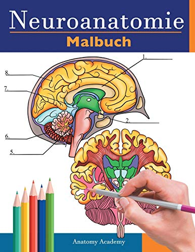neuroanatomie malbuch: Unglaublich detailliertes Selbsttest Buch über die Färbung des menschlichen Gehirns für die Neurowissenschaften | Perfektes ... Pfleger, Ärzte und Erwachsene