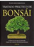 TRATADO PRACTICO BONSAI/K (GUÍAS DEL NATURALISTA-BONSÁI)