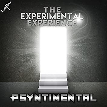 The Experimental Experience