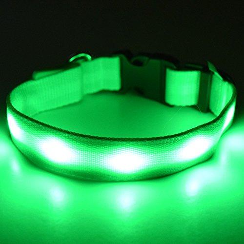 Fun Pets Collier de sécurité LED pour Chien Rechargeable Petit (22cm - 40cm / 8.6\