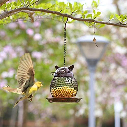 delibett Vögel Sittich Vögel Futterspender Futternapf Acryl Haustier Samen Transparente Lebensmittel Behälter Käfigmontage Lebensmittelbehälter