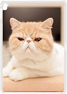 Babu Building Use for Ipad Pro 12.9 Inch Personalised Have with Shorthair Cat Rigid Plastic Phone Shell Man