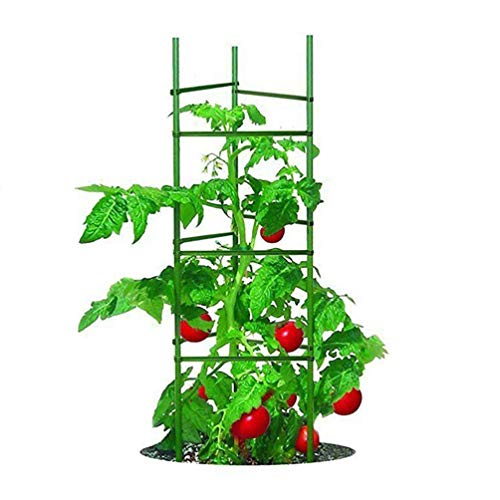 Growsun 5 Ft 5-Pack Tomato Cage Plant Support...