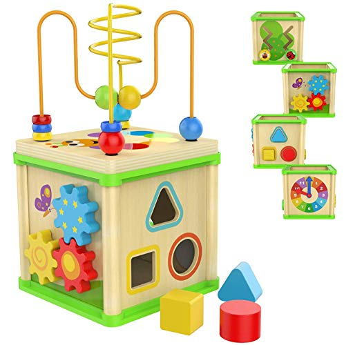 TOYSBBS Wooden Fruits Slide Bead Maze Colorful Abacus Montessori Toys for Toddlers Roller Coaster Activity Cube Educational Toys Birthday Gifts Indoor Games for Walkers Boys Girls