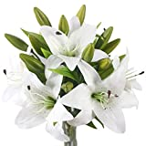 JAROWN 6pcs Artificial Tiger Lily Flowers Bridal Wedding Bouquet Latex Real Touch Plant for Home Decoration (White)