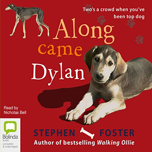 Along Came Dylan audiobook cover art