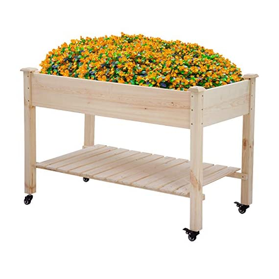 Raised garden bed with legs 48x23x32 inch wheels elevated garden bed wood planter box kit for vegetable flower outdoor… 1 ✔【high quality materials】:the raised garden bed is made of no paint, garden bed use non-toxic fir wood, which is known for its strength and dimensional stability as well as its natural resistance to rot and pests. The 0. 6'' thick solid wood boards are only sanded to prevent any undesired injury caused by wood splinters. ✔【nature gardening buddy】:the garden bed use natural wood color makes your garden and greenhouse more original and healthy, and its natural wood grain on the boards bring a rustic and natural style to your garden. ✔【ergonomic design】:the garden bed built with a set of locking wheels to move the planter from place to place. The wood garden bed user-friendly design,the height about garden raise bed is 32. 3 inch, the people who have a backache or knee pain can easily manage plants,you don't need to bend down or keep down.