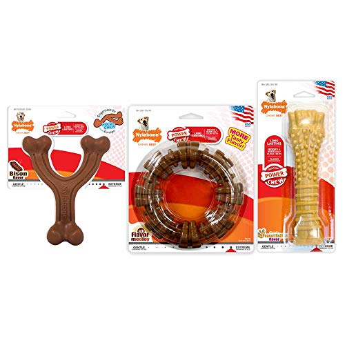 Nylabone Power Chew Customer Favorites Dog Chew Toy Bundle - Dog Toys for Aggressive Chewers Bison & Flavor Medley & Peanut Butter Giant