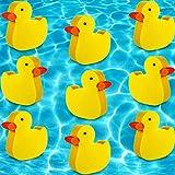 18 Pieces Hot Tub Sponge Oil Absorbing Sponge Hot Tub Scum Sponge Hot Tub Accessories Pool Sponge Oil Sponge Spa Pool Sponge Duck Scum Sponge for Scum Cosmetic Hot Tubs Cleaning Accessories