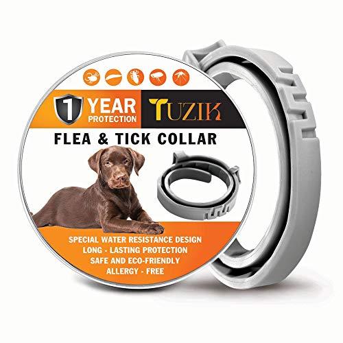 TUZIK Collar para Control de pulgas y garrapatas, 12 Meses, Control de pulgas y garrapatas, para Perros, Tratamiento Natural, Herbal, no tóxico, protección Impermeable y Ajustable Mejor Collar
