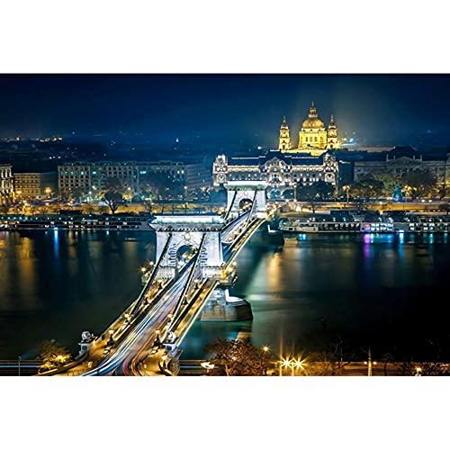 Vista Notturna Della Città Di Budapest 120 Pcs Puzzle In Legno Brain Challenge Team Building Grande Adulti Giochi Puzzle Relax Puzzle Giochi Diy Regalo
