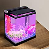 Hygger Smart LED Temperature Display 4 Gallon Fish Tank Small Desktop Aquarium Starter Kit with Lid, Filter Pump Filter Cartridges for Snail Tropical Fish