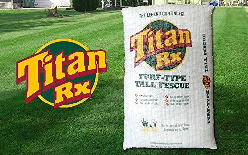 SeedRanch Titan Rx (Ultra) Tall Fescue Grass Seeds - 50 Lbs.
