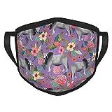 New*design Brahman Kuh-Maske für Erwachsene, mit schwarzem Rand, tragbarer Gesichtsschutz, Bandana,...