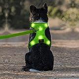 Arnés de perro LED micro USB recargable sin tirones chaleco arnés con cómodo traje acolchado para perros pequeños, medianos y grandes (S, verde)