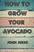 How to Grow Your Avocado