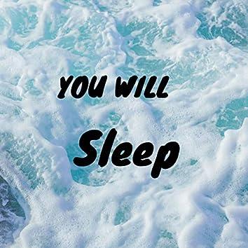 You will sleep (Instrumental Version)