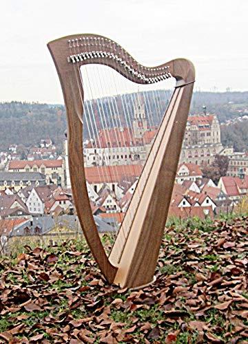 Irisch Keltische Harfe mit 29 Saiten Halbtonclappen Incl Tasche Neu Harp