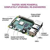 Zoom IMG-1 dinoka raspberry pi 4 modello