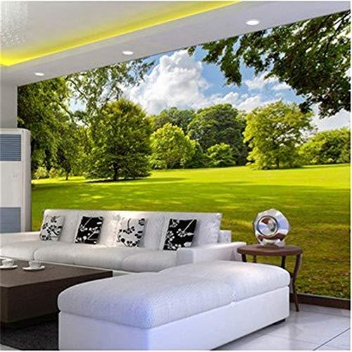 Zhcm Wallpaper benutzerdefinierte geprägte Tapete große 3D einfache dreidimensionale Landschaft Schlafzimmer Malerei 3D-Tapete, 400 * 280cm