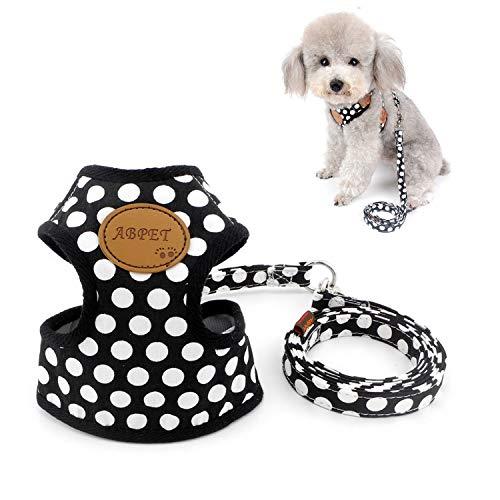 Zunea Hundegeschirr für Kleine Hunde Welpe Hund Weste Geschirr mit Leine Set Verstellbar Mesh Gepolstert Kein Pull für Katze Chihuahua Schwarz S