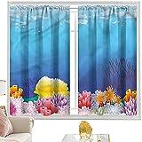 Cortinas acuario, variedad de corales coloridos W52 x L95 pulgadas cortinas opacas con bolsillo para barra