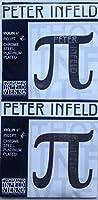 PETER INFELD ヴァイオリン弦 E線(プラチナ)2本セット PI01PT×2本