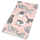 Cat Fabric Cute Cats Kitten Pets Design by Andrea Lauren - Pink and Grey Headbands Bandana Cap Scarf Face Mask Neck Gaiter Headwrap Sun UV Protection