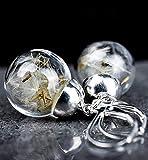 Ohrringe Versilbert mit Echten Pusteblumen - Wünsch dir was - Hängend 3cm
