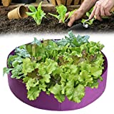XOYZUU Bolsas para plantas de semillero, macetas de jardín de fieltro, macetas de tela con asas, maceta para cultivo de jardín, para flores, verduras, tomates, patatas