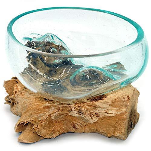 Wurzel mit Glasschale klein Schale Dekoschale Glas auf Holz Durchmesser 12-13 cm Holzdeko Teakholz Deko (Wurzel 13-15 cm)