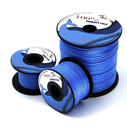 Piore 100lb 1000lb Blue Line Kite String Line Trenzado para Pesca Kite Flying Outdoor Camping Tent Cord, 580lb 100ft Blue