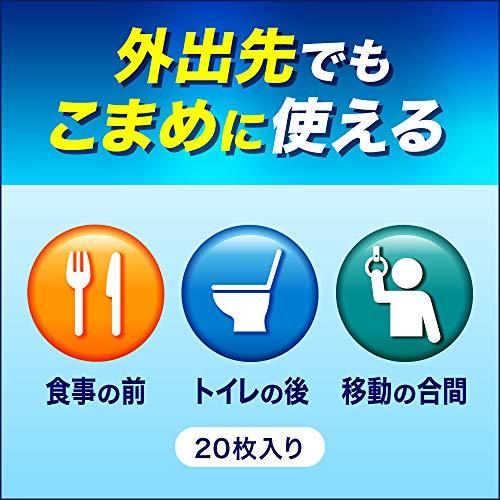 花王 ウェットティッシュ アルコール ビオレガード薬用消毒シート 携帯用 1個(20枚) 花王
