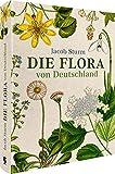 Jacob Sturm - Die Flora von Deutschland: Deutschlands Flora in Abbildungen nach der Natur mit Beschr...
