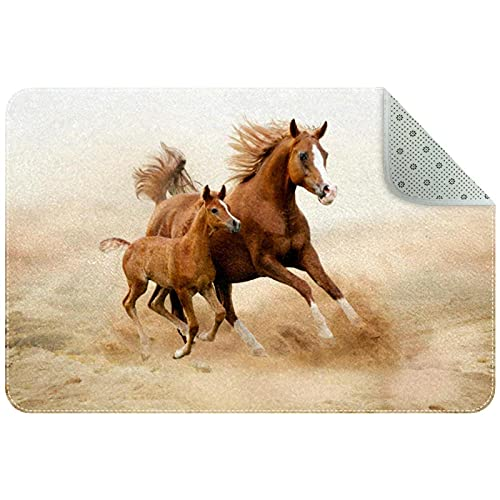 Alfombra de cocina lavable para entrada, alfombra de escritorio, alfombra de baño, diseño de caballo marrón desierto, 78,7 x 50,8 cm
