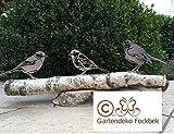 Gartendeko Fockbek Figur Vogel/Vögel (3 Stück) auf Holzstamm Garten Rost Meise Rotkehlchen Spatz