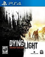 Dying Light - PlayStation 4 [並行輸入品]