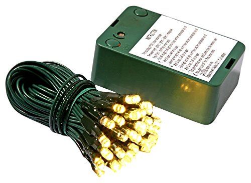 Vickerman 35 Count Battery Operated Wide-Angle LED Light Set with Timer and Sensor, Green Wire, Warm White